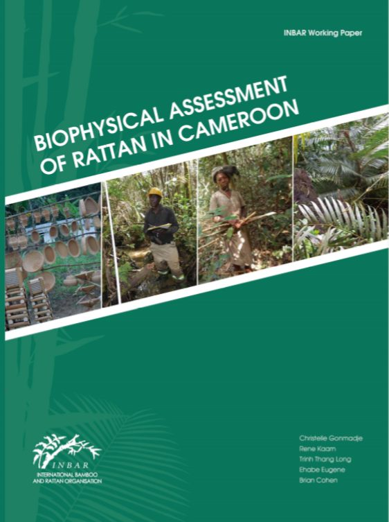 Biophysical Assessment of Rattan in Cameroon