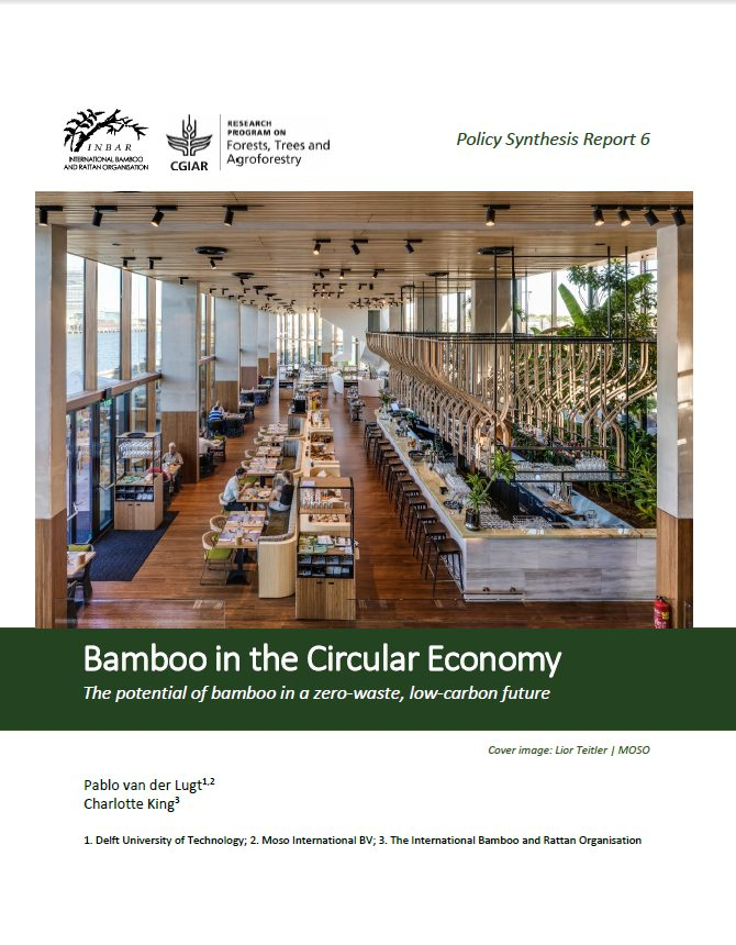 Policy Synthesis Report 6. Bamboo in the Circular Economy