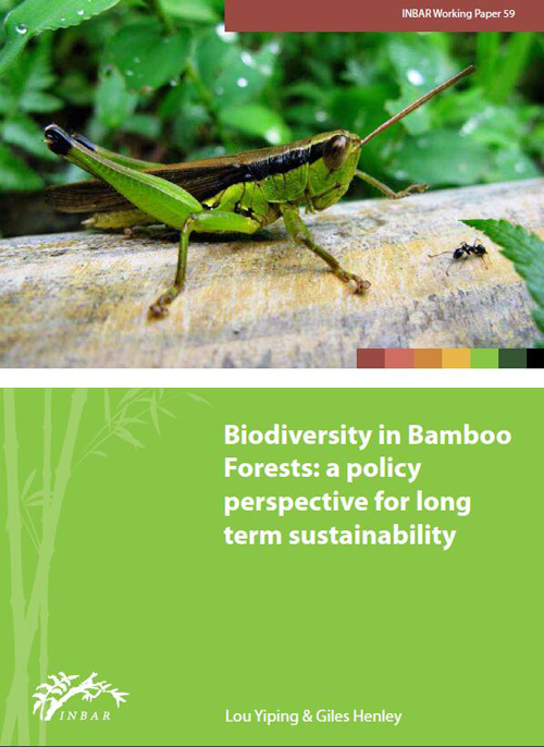 Biodiversity in Bamboo Forests: A Policy Perspective for Long Term Sustainability