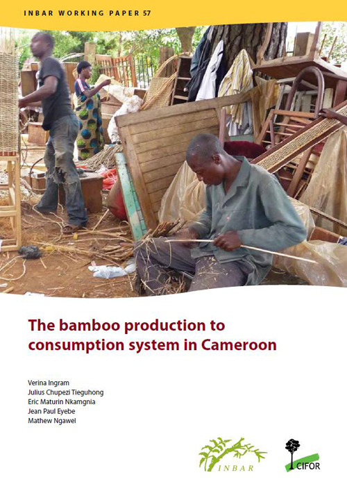 The Bamboo Production to Consumption System in Cameroon