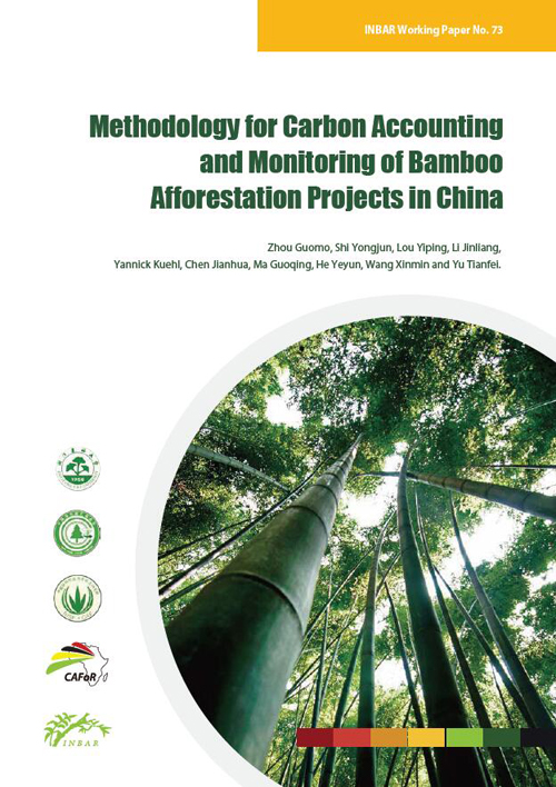 Methodology for Carbon Accounting and Monitoring of Bamboo Afforestation Projects in China