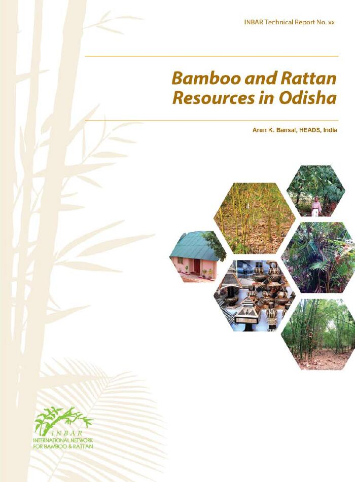 Bamboo and Rattan Resources in Odisha