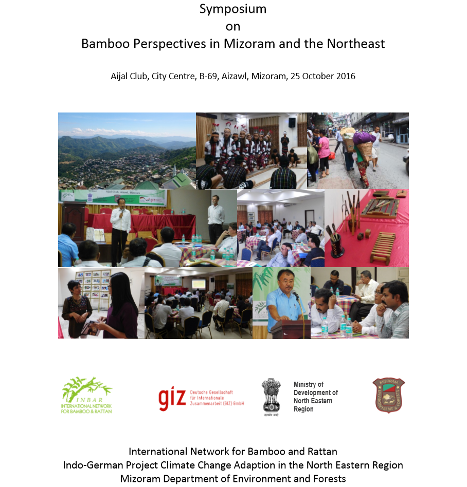 Bamboo Perspectives in Mizoram and the Northeast