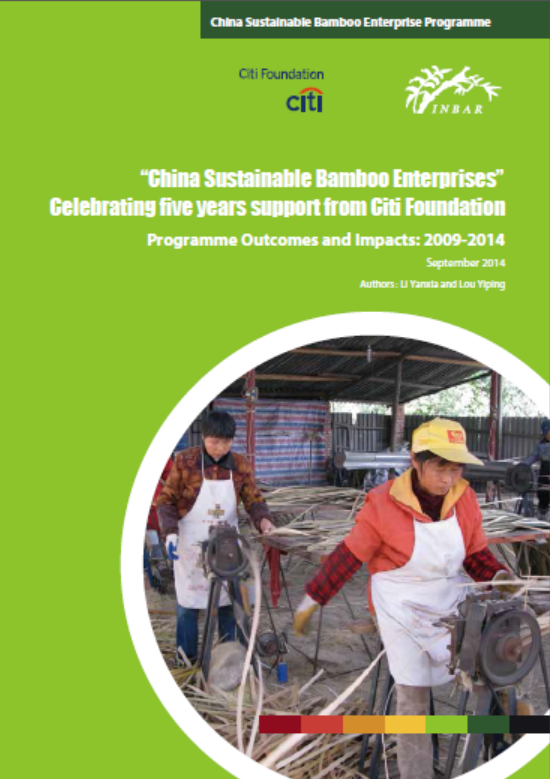 China Sustainable Bamboo Enterprises: Programme Outcomes and Impacts