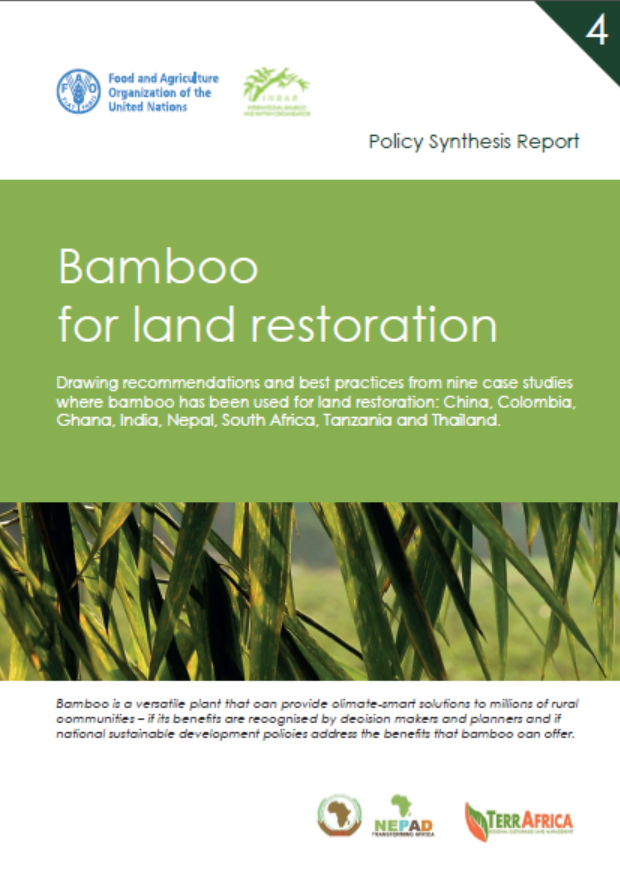 Policy Synthesis Report 4. Bamboo for Land Restoration