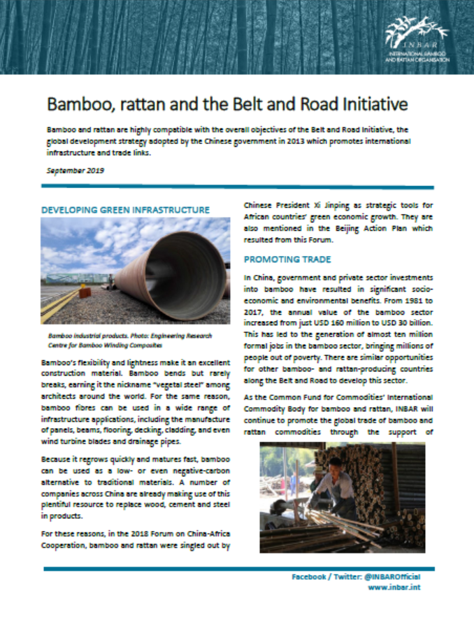 Bamboo, Rattan and the Belt and Road Initiative: Fact Sheet