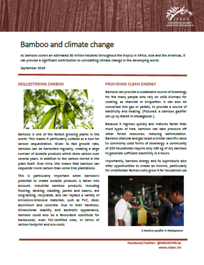 Bamboo and Climate Change: Fact Sheet