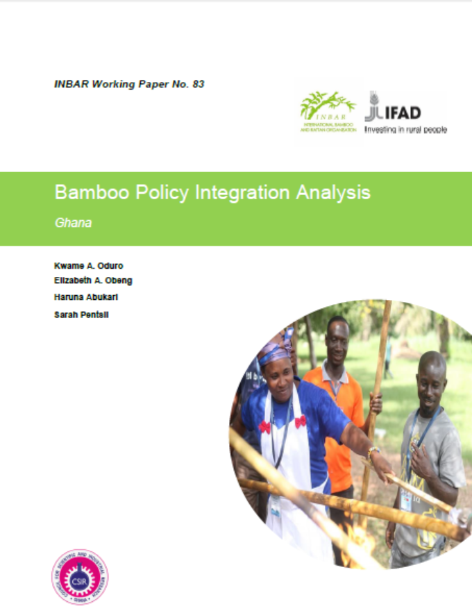 Bamboo Policy Integration Analysis: Ghana