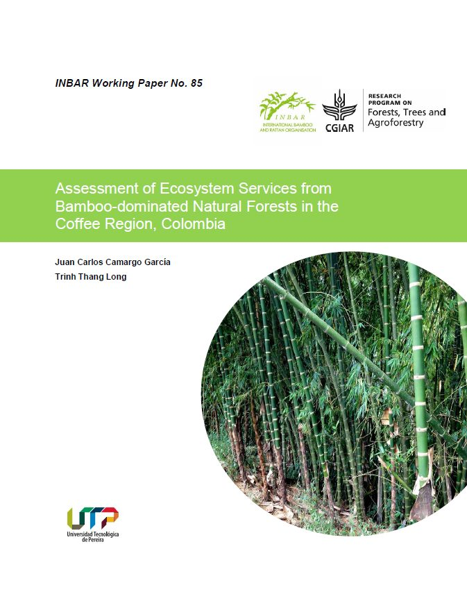 Assessment of Ecosystem Services from Bamboo-dominated Natural Forests in the Coffee Region, Colombia