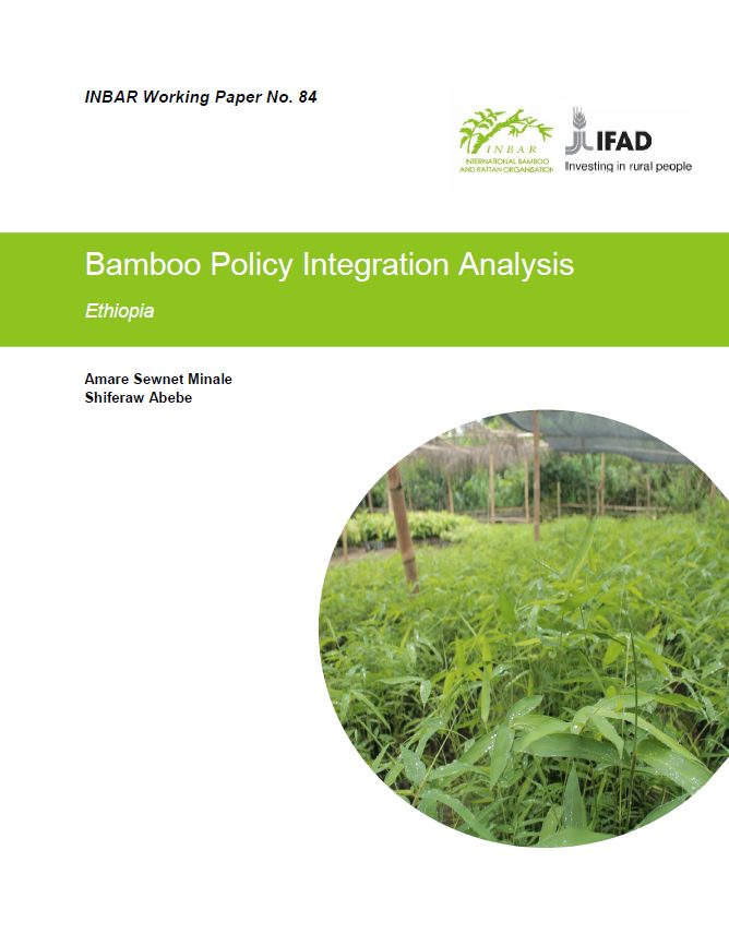 Bamboo Policy Integration Analysis: Ethiopia