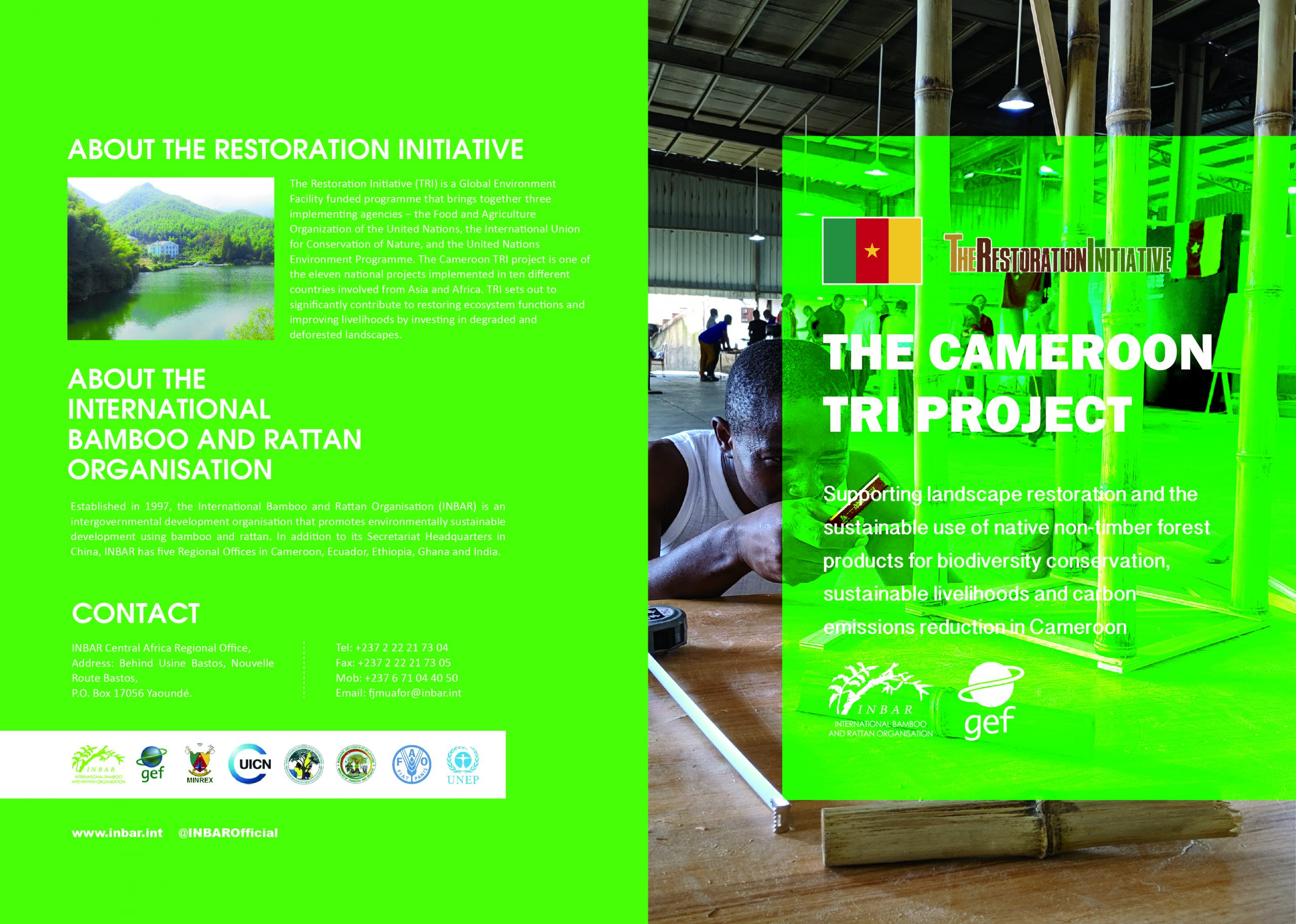 The Cameroon TRI Project