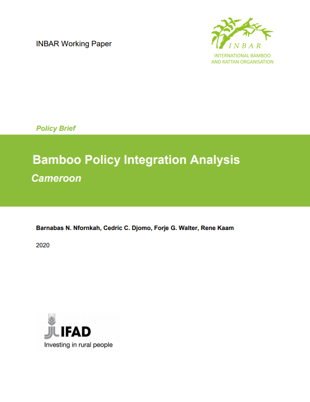 Bamboo Policy Integration Analysis: Cameroon